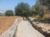 Path to Pefkos Beach