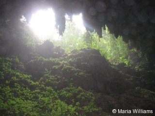 Cave Clara opening at Camuy Cave Park