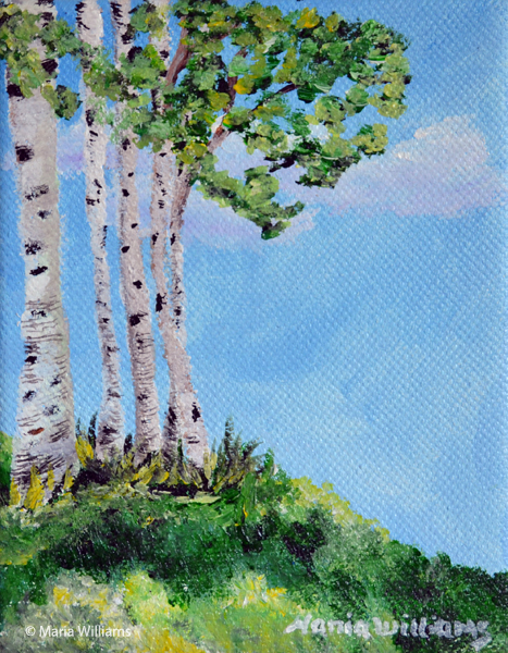 Birches by Maria Williams
