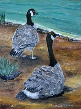 Canadian Geese by Maria Williams