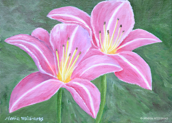 Pink Lilies by Maria Williams