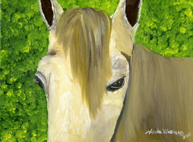 Portrait of a Curious Horse by Maria Williams