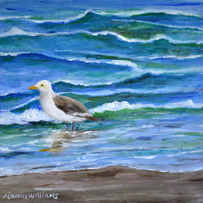 Seagull  by Maria Williams